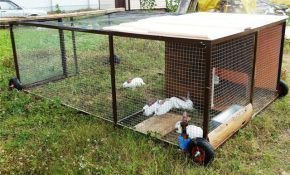 Содержание и разведение кроликов в вольерах