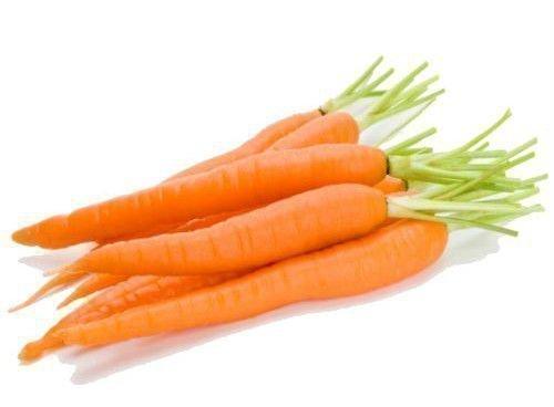 Тертая морковь необходима подрастающим цыплятам