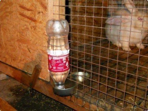 Поилка из бутылки