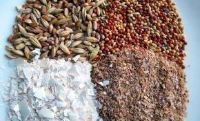 Рецепты приготовления корма для перепелов