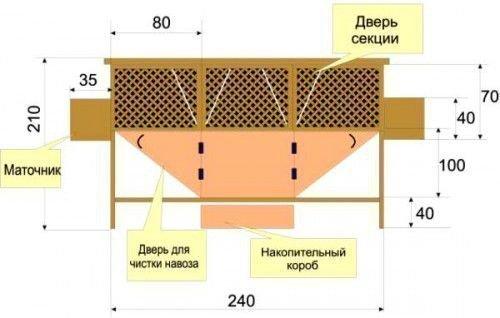 Схема клетки