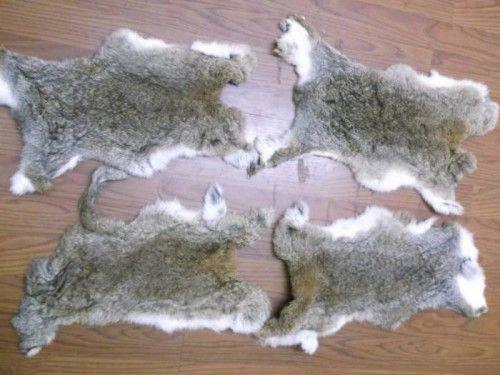 Шкурки кроликов