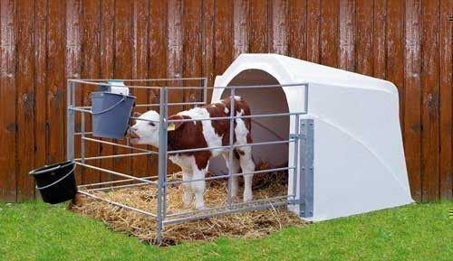 Домик для теленка