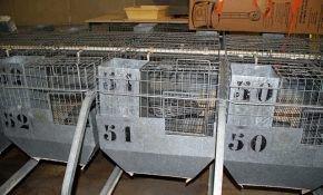 Клетки промышленного типа для кроликов