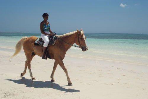 Девушка на лошади на пляже