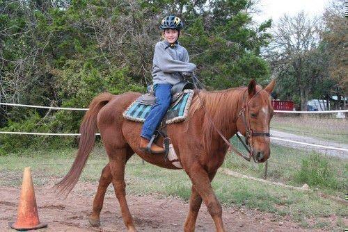 Ездок на лошади