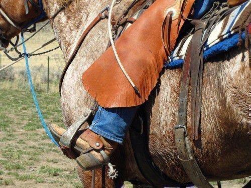Шпоры для лошади