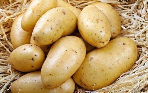 Картошка на сене