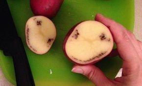 Кольцевая гниль сортов картофеля