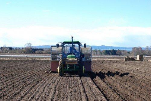 Обработка земли под картофель
