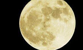 Посев лука севок по лунному календарю
