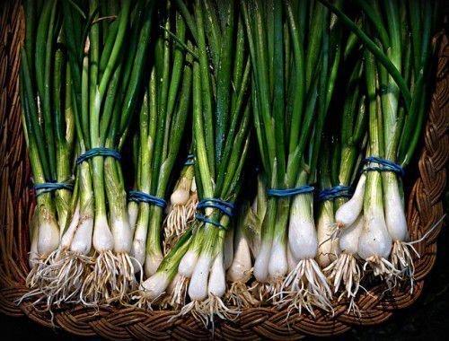 Зеленый лук в корзине