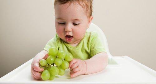 Грудничок и виноград