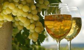 Описание технических сортов вин
