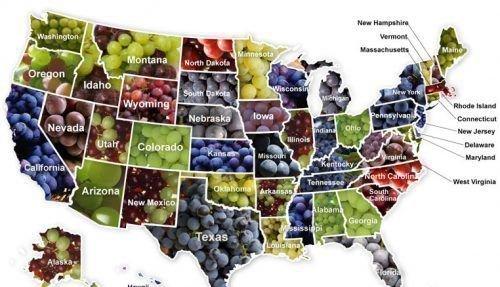 Американский виноград