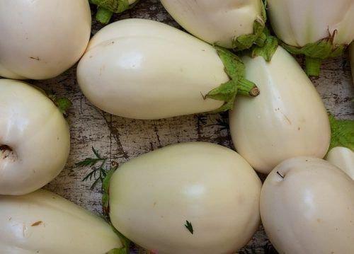 Белый баклажан