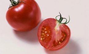 Описание сорта томата – Юбилейный Тарасенко