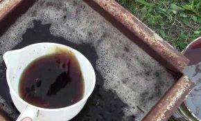 Питательные вещества для удобрения винограда