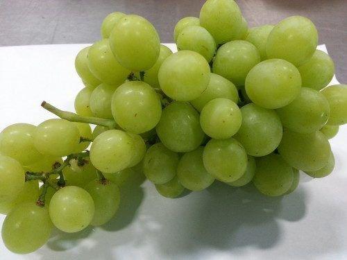 Виноград Перлет