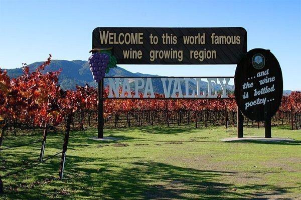 Виноградник в США