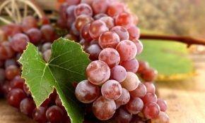 Разновидности красного винограда
