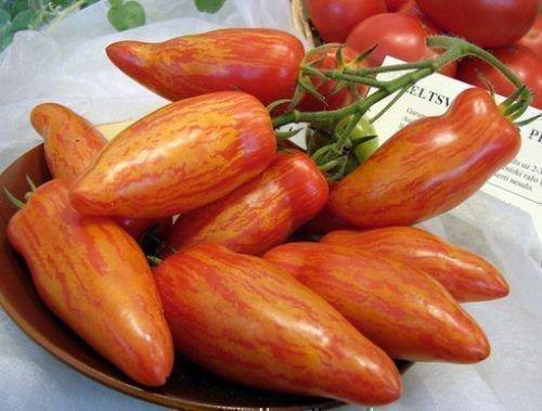 Применение томатов перцевидных