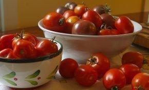 Полезные и вредные свойства томатов