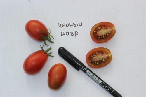 Размеры плода и в разрезе