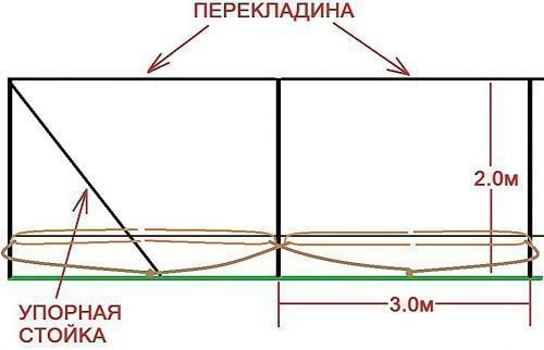 Размеры шпалеры