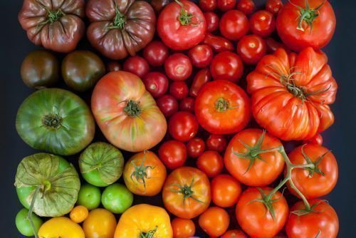 Разные томаты