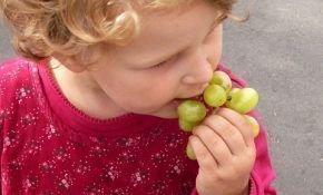 С какого возраста можно вводить в рацион ребенка виноград
