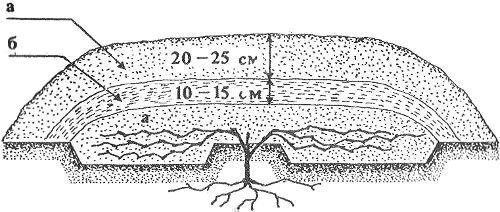 Схема укрытия винограда