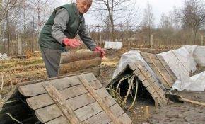 Как правильно укрывать виноград на зиму: способы укрытия