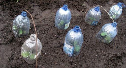 Защита пластиковыми банками