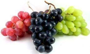 Лучшие сорта винограда в алфавитном порядке: выбираем, пробуем