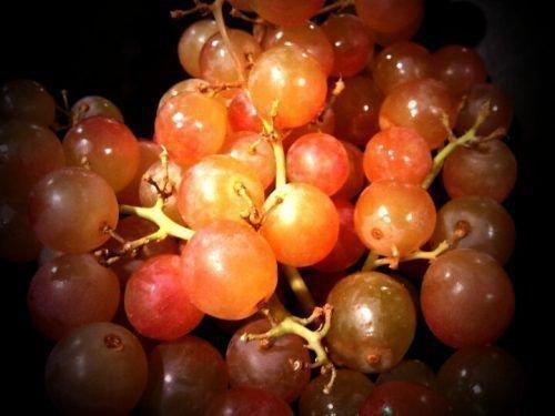 Ранний розовый виноград