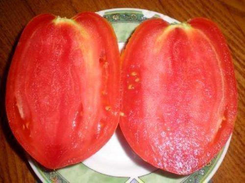 Плод Р. Фламинго в разрезе