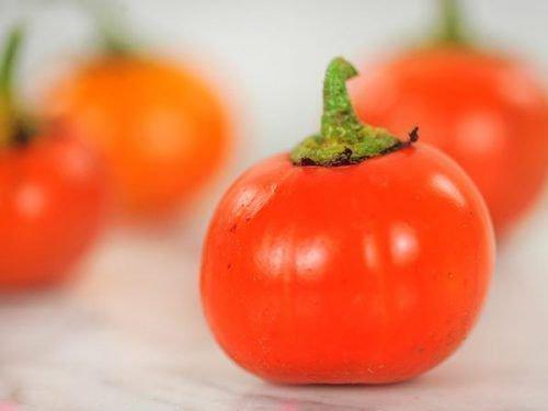 Сорт баклажана - красный