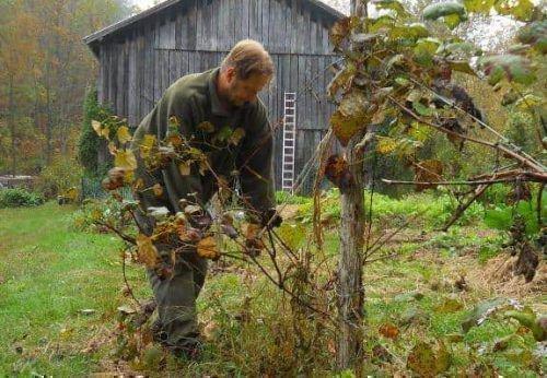 Осенняя обработка
