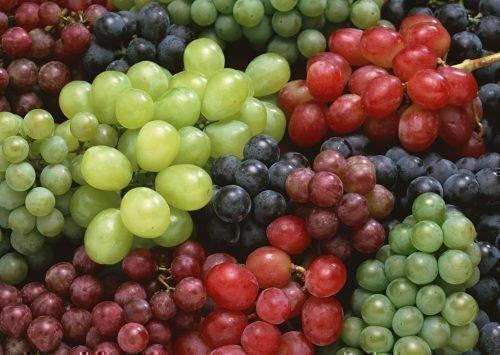 Разнообразие форм ягод