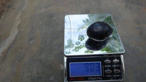Вес ягоды