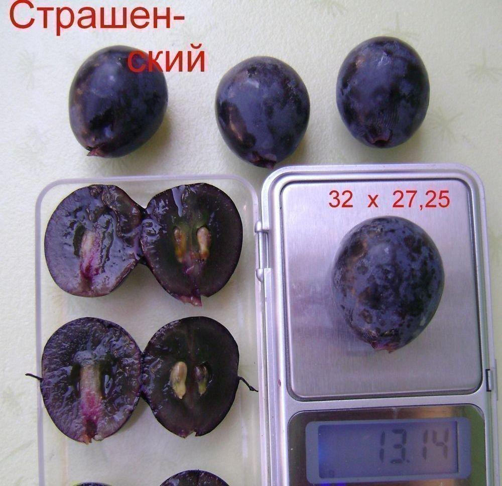 Вес ягоды Страшенского