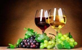 Технические виноградные сорта и их характеристика