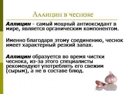 Аллицин в чесноке