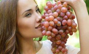 Сладкие виноградные сорта – обзор с фото