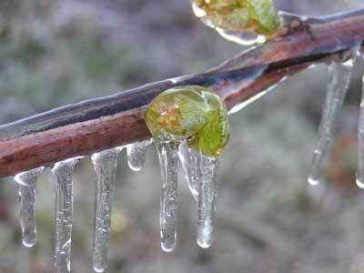 Опасный ледяной дождь