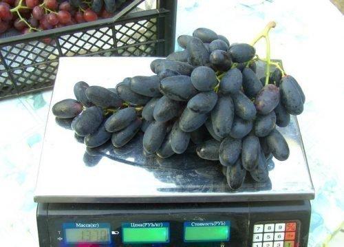 Вес грозди Велики