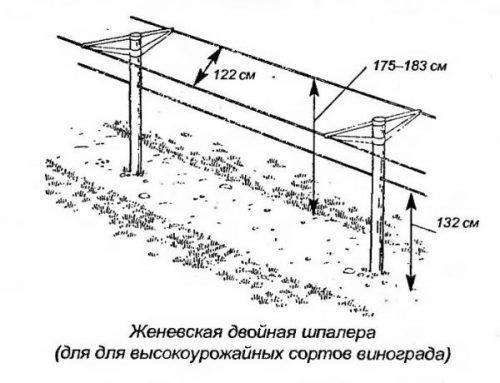 Женевская конструкция
