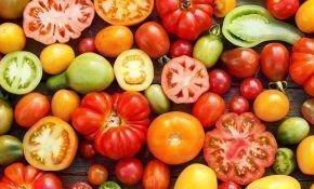 Разнообразные сорта томатов