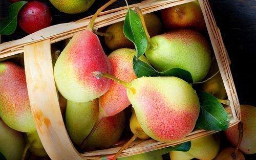 Груша - вкусный фрукт